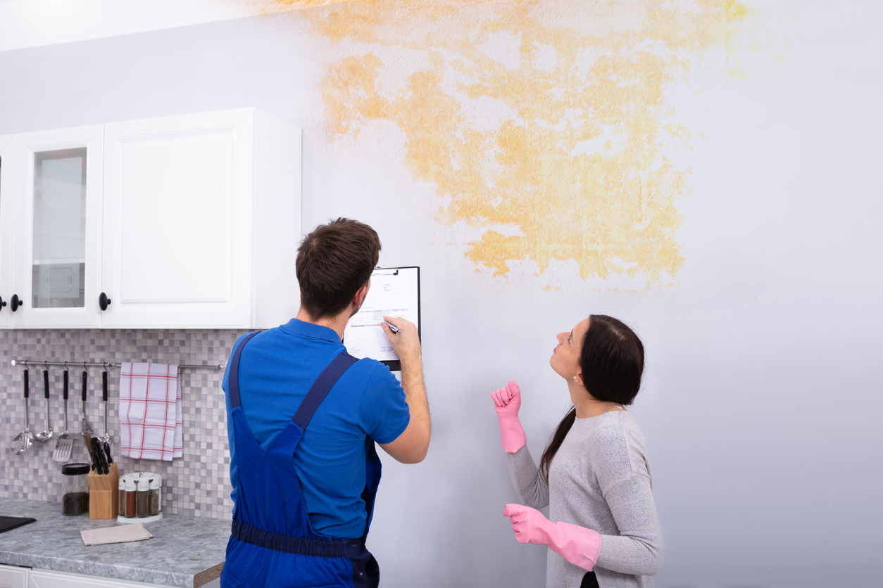 worker looking at mold damage in kitchen, sell a home with mold damage